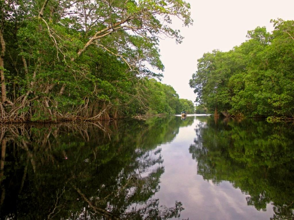 Laguna de los Micos